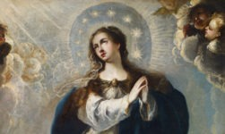 Check Some Facts About The Immaculate Conception!