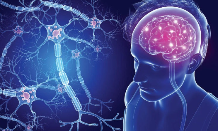 Multiple Sclerosis: Common Symptoms And Diagnosis Options