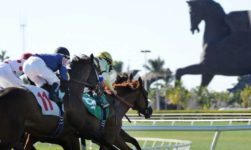 $9 Million Pegasus World Cup Of 2019 Edition Contenders