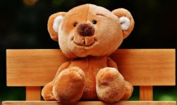 Happy Teddy Day 2019: Top Collection Of Wishes, Message And Quotes