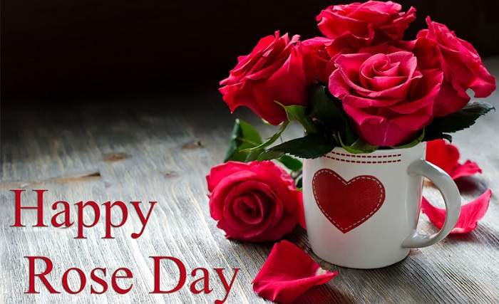 Rose Day 2019 Images, DP, Profile Pics