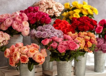 These Are The Best Same Day Flower Delivery Sites For Any Occasion!