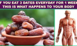 These Are The Six Health Benefits Of Consuming Dates!