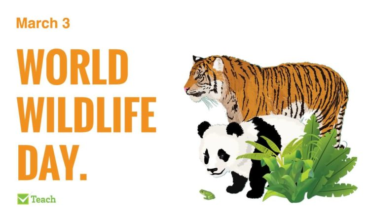 3 March World Wildlife Day 2019: Life Below Water For People And Planet