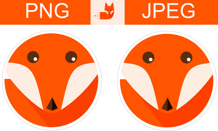 JPEG vs PNG: Which Is The Better Format For Compressed Images?