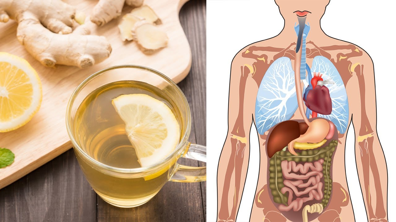 These Are The Various Health Benefits Of Using Ginger Everyday