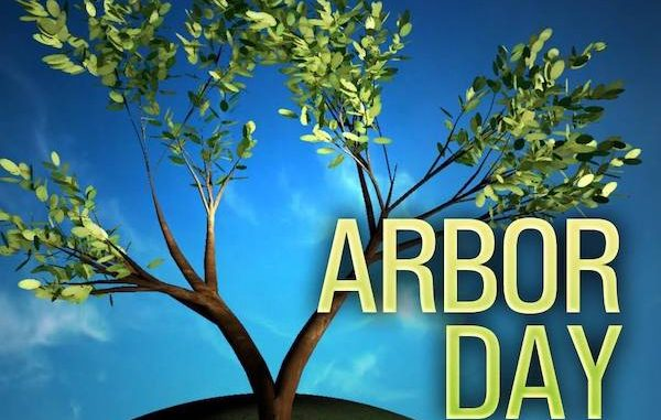 Arbor Day 2019: Facts, Quotes, Messages To Celebrate This Remarkable Day