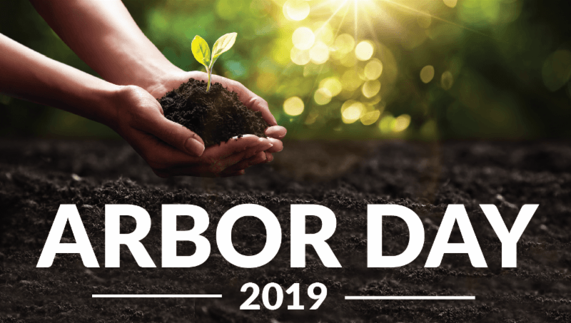 Arbor Day 2019 Greetings Cards Pictures Quotes