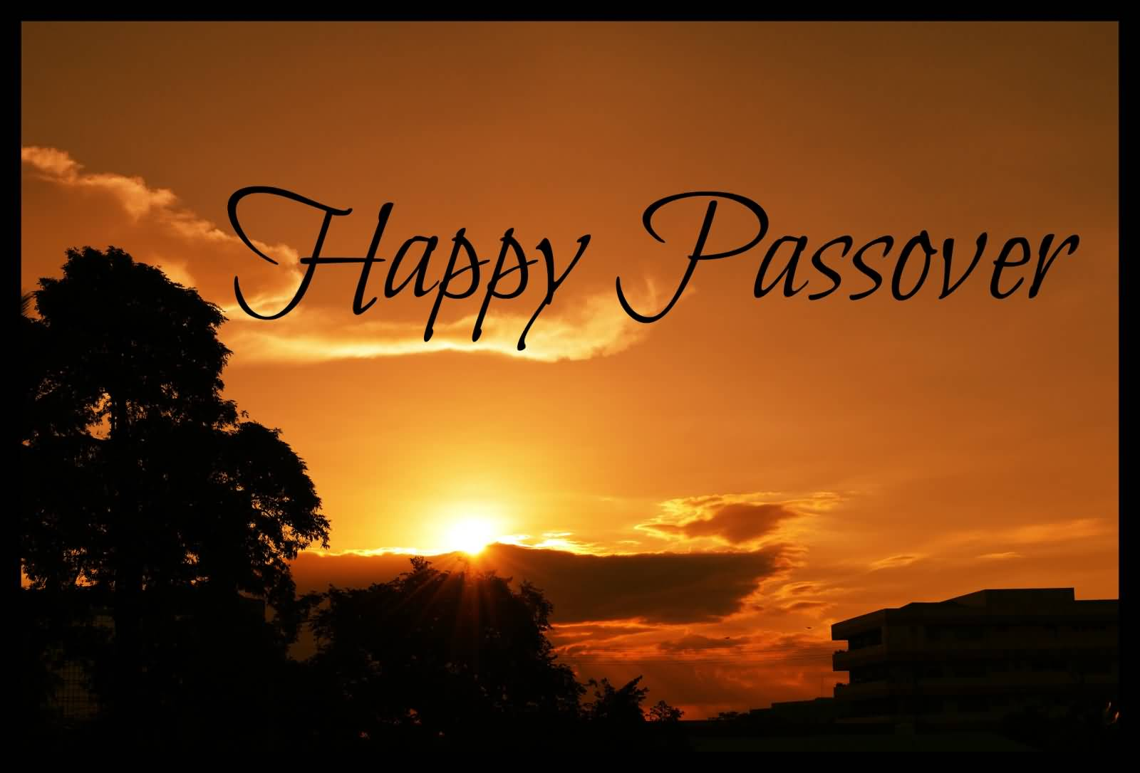 Happy Passover 2019: Inspirational Quotes, Messages To Share With Family & Friends