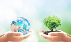 When is Earth Day 2019?: Top Quotes, Activities And Celebration Ideas!