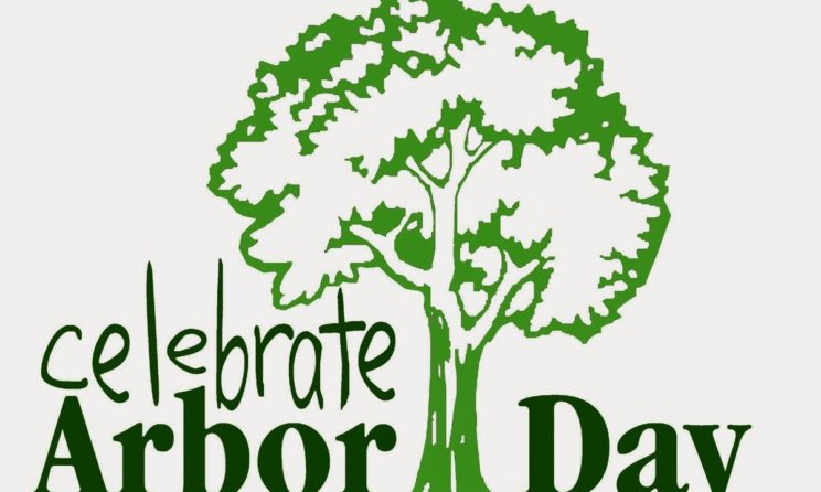 Why Everyone Should Participate in Arbor Day; Here Is The Reason?
