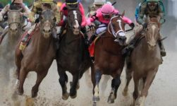Kentucky Derby 2019 Final: Results, Standings, Payouts And Major Highlights