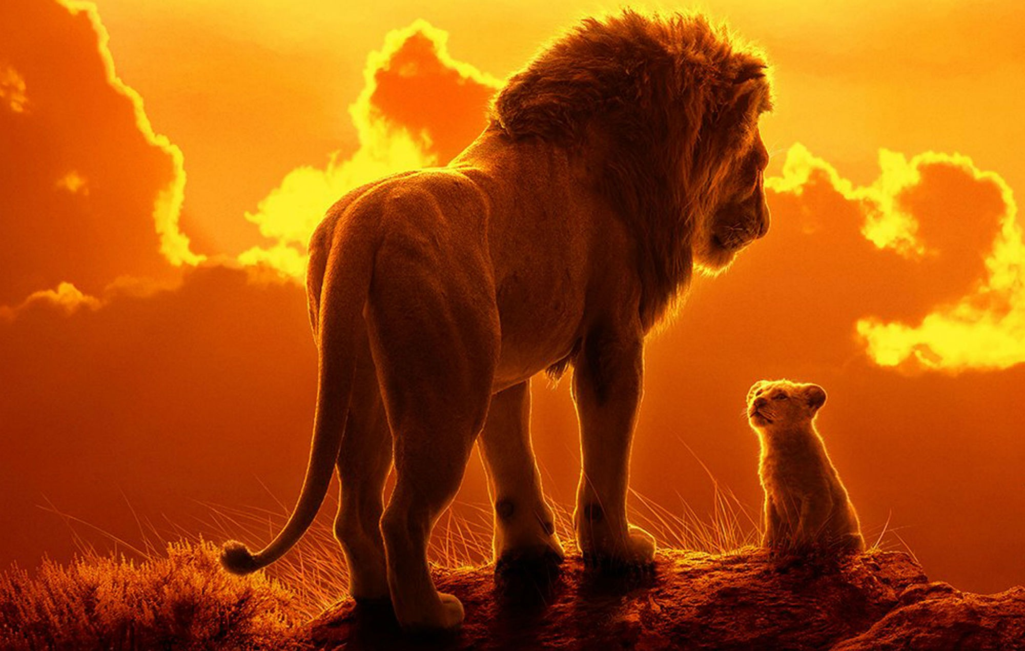 The Lion King (2019) Review: Is This Remake Of Classic Animated Film Worth Your Time?