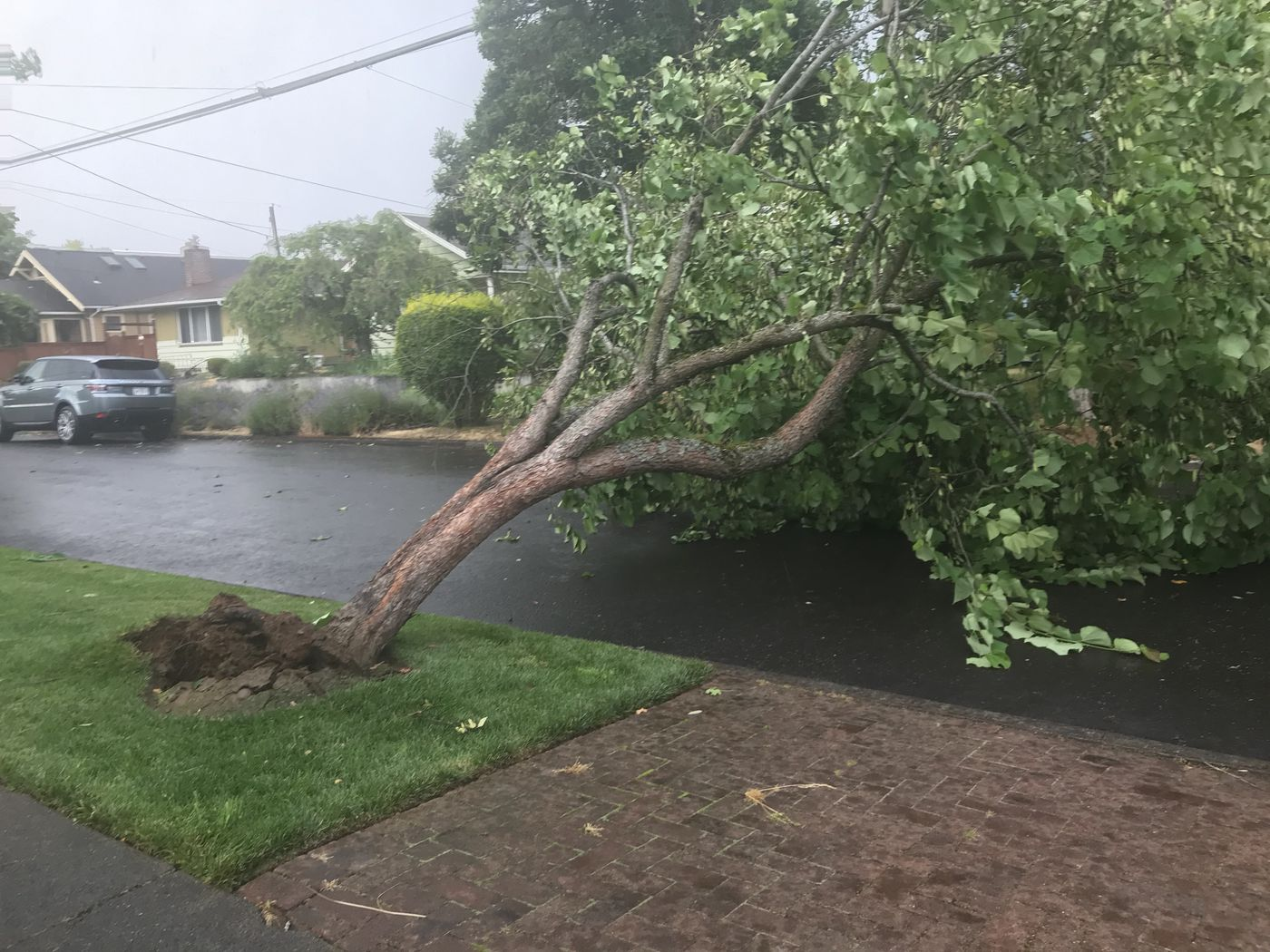 Tornado Touched Down In North Portland, NWS Confirms